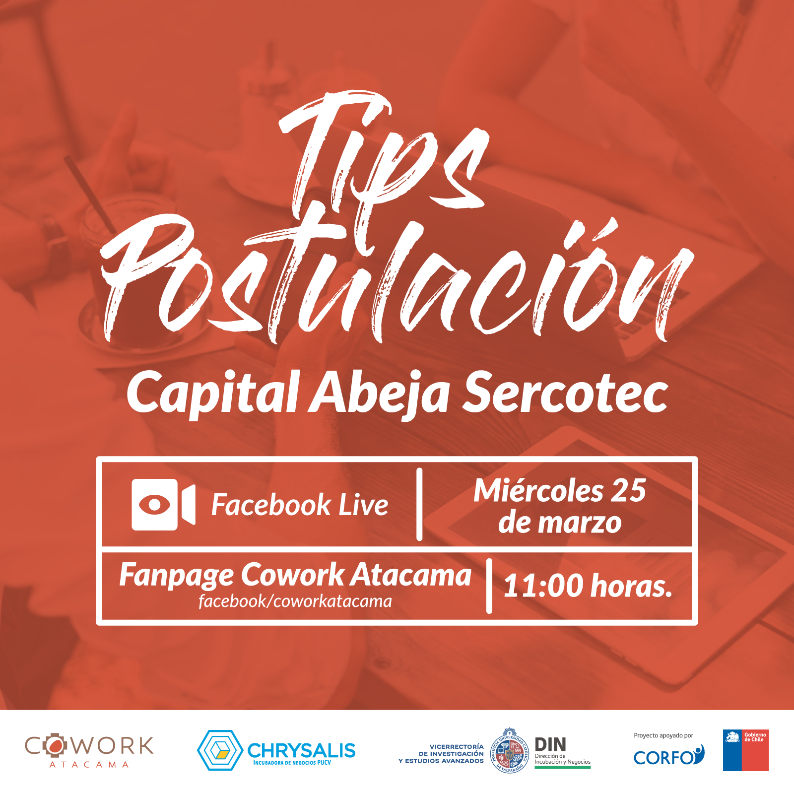 Webinar: Tips Postulación Capital Abeja